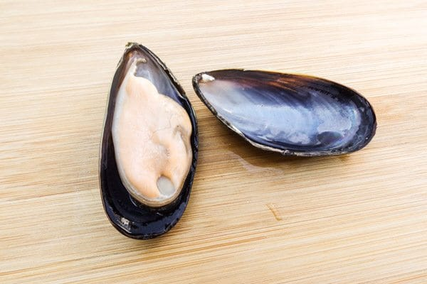 Mussel on cutting board for Baked Mussels