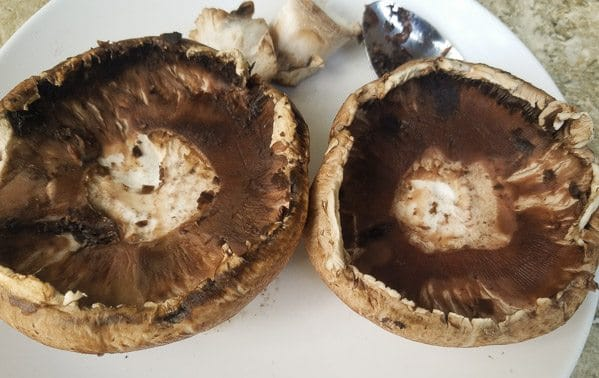 Cleaned portobello mushrooms for Stuffed Mushrooms Recipe on white plate.